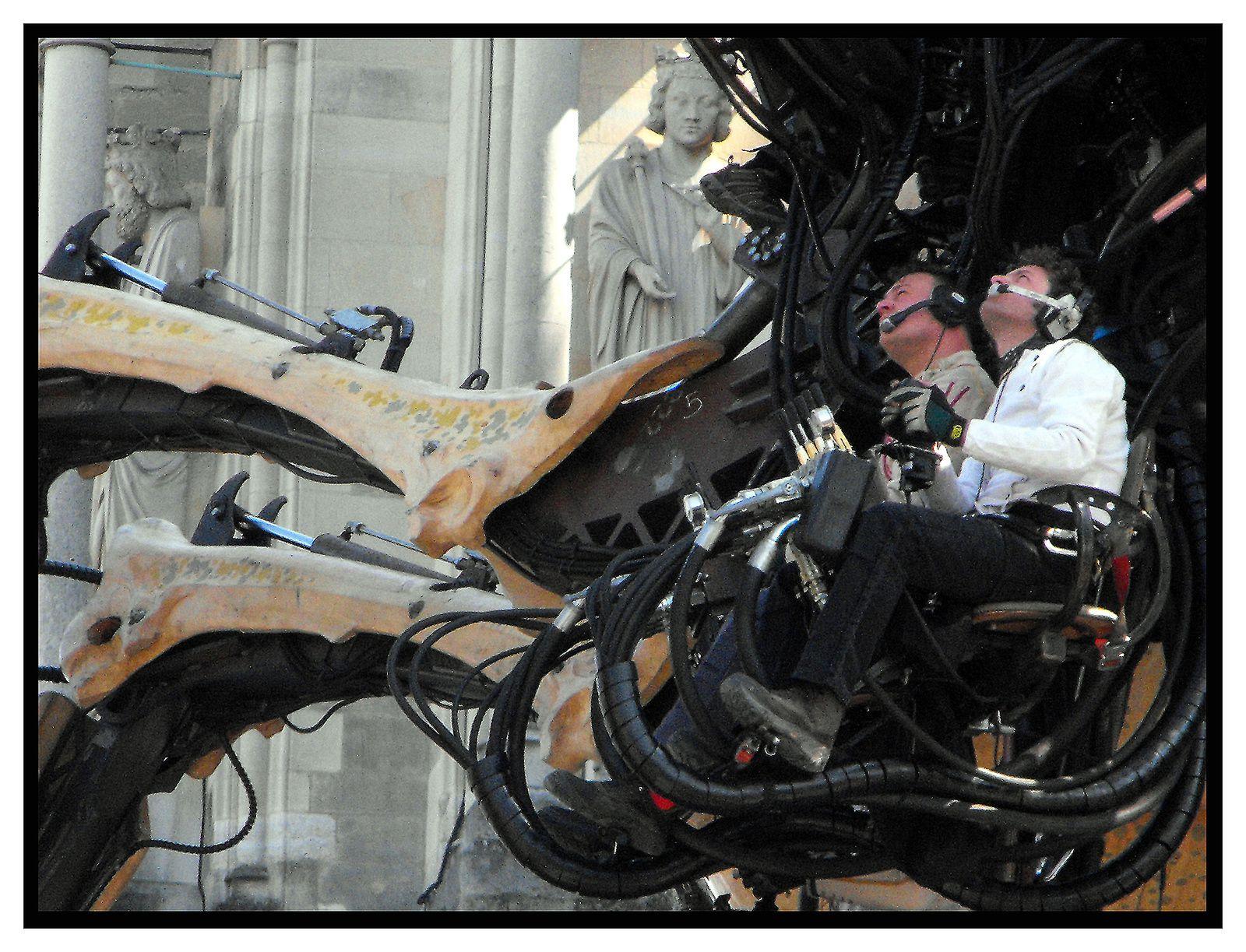 LA MACHINE: Une araignée a Reims en Avril 2011.