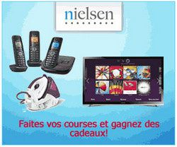 inscription nielsen homescan
