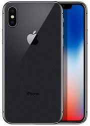 Apple iPhone XXL