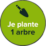 reforest-action-planter-arbre