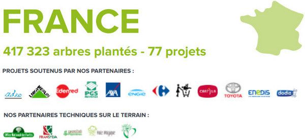 reforestation-en-france