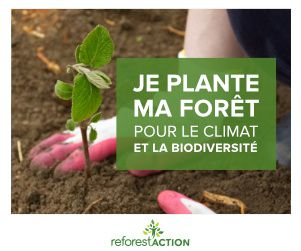 reforest-action