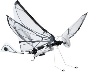 drone-papillon-bionicbird-metafly