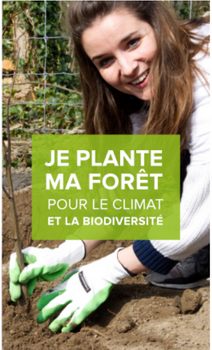 reforestaction-avis