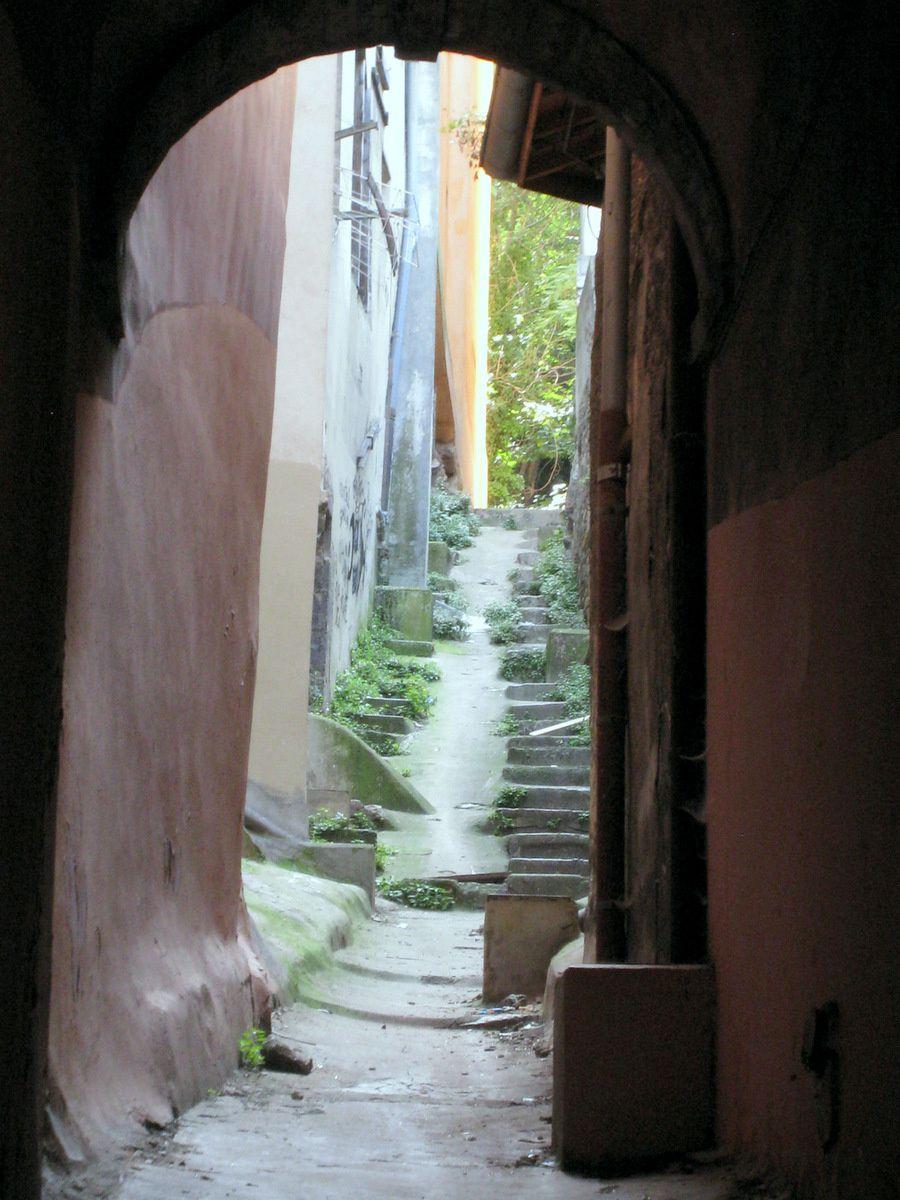 La ruelle Punaise, Lyon