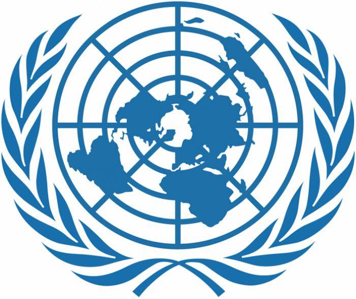 Organisation des Nations Unies (ONU)