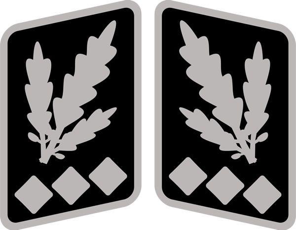 SS-Oberst-Gruppenführer