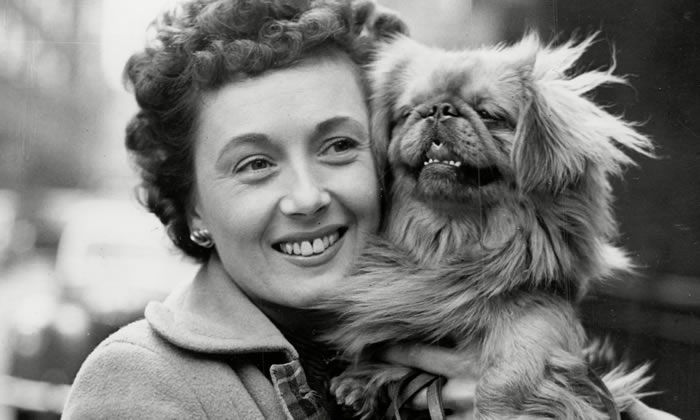 Pearl Carr with her dog Sammy in 1953. Photograph: ANL/Rex/Shutterstock