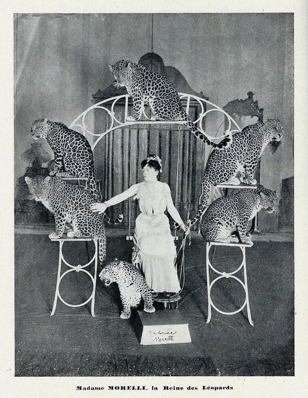 Dompteuse de panthères au musée des Beaux-Arts de Tours (vers 1910)