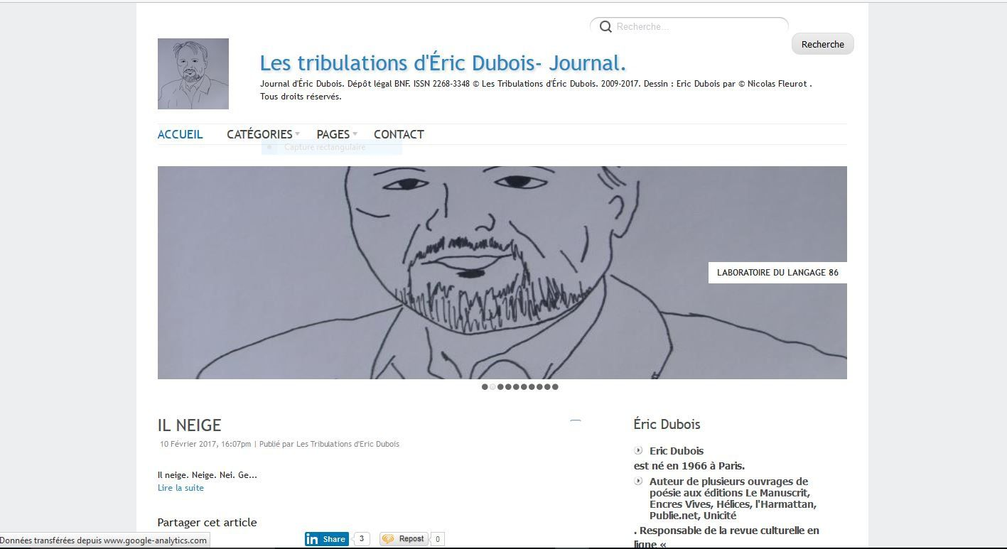 Les tribulations d'Eric Dubois - DR