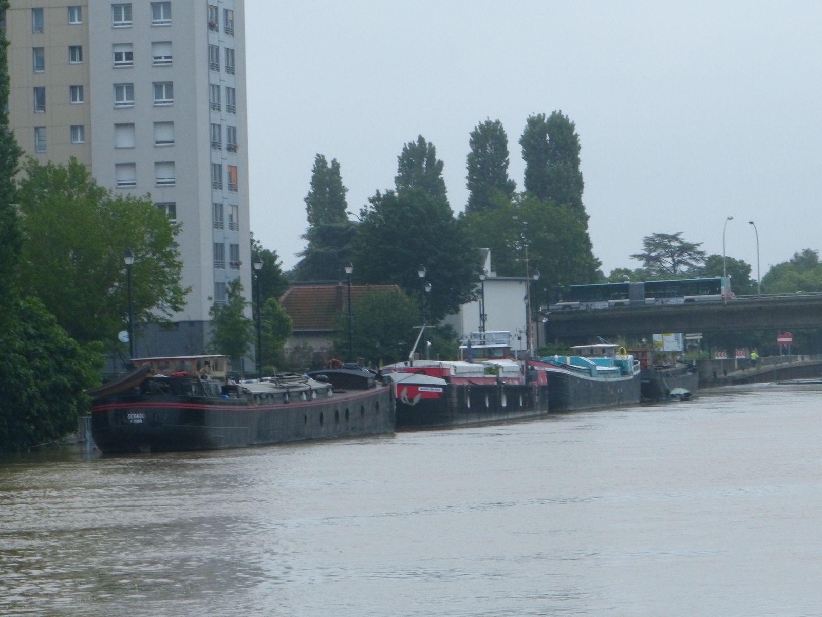 la Marne coule de St Maur à Créteil....