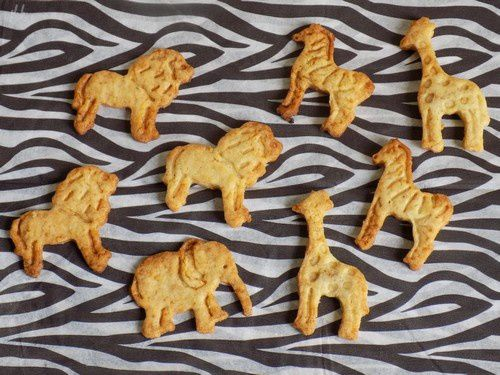 Biscuits z'animaux