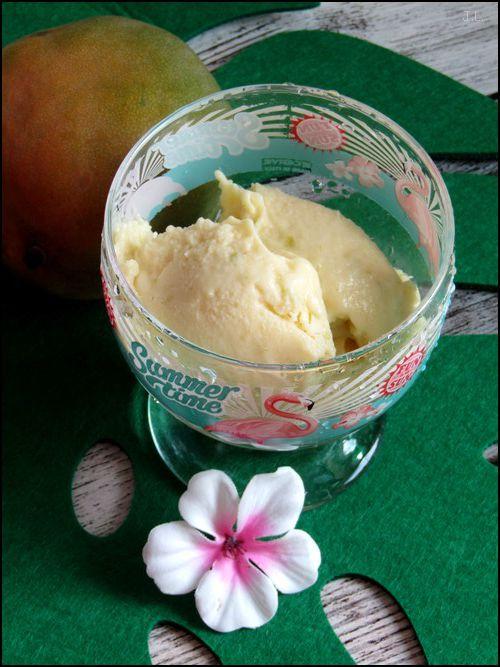 Sorbet mangue coco