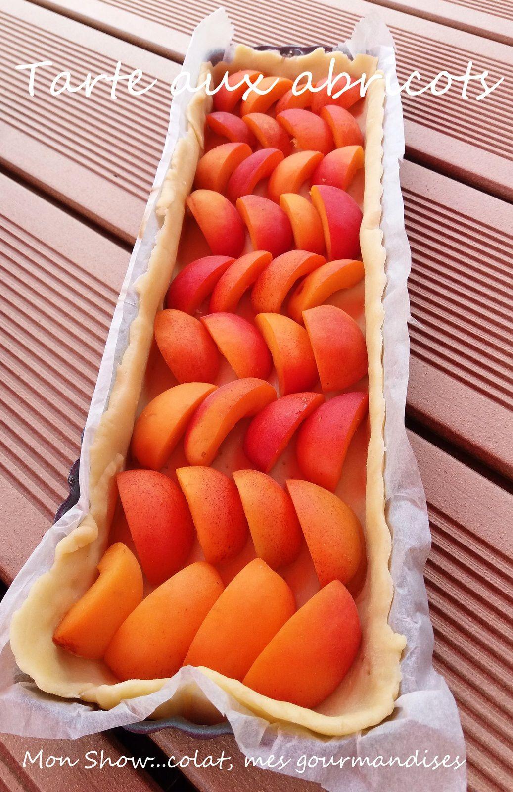 Tarte aux Abricots (recette facile)