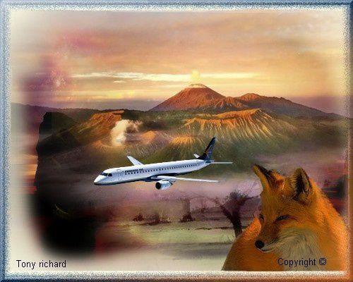 À perte de vue tu seras mon inconnue Création par Tony richard pour le poème Les ailes d'acier. Tous droits réservés