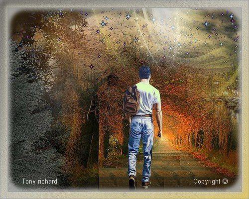 Création Copyright par Tony richard pour Jour et nuit. Tous droits réservés