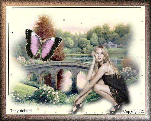 Création Copyright par Tony richard pour La rose et le papillon. Tous droits réservés