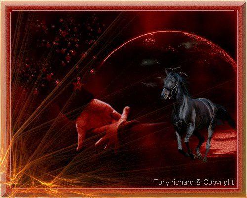 Les lueurs de l'éphémère Création par Tony richard pour Le désir de deux mains. Tous droits réservés