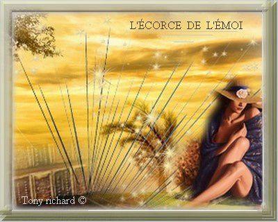 Page de couverture pour le recueil L'écorce de l'émoi par Tony richard. Tous droits réservés
