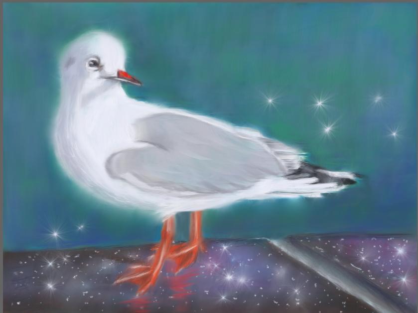 Mouette rieuse sur fond d'eau d'après une version de Joël Simon dans la revue Plaisirs de peindre.