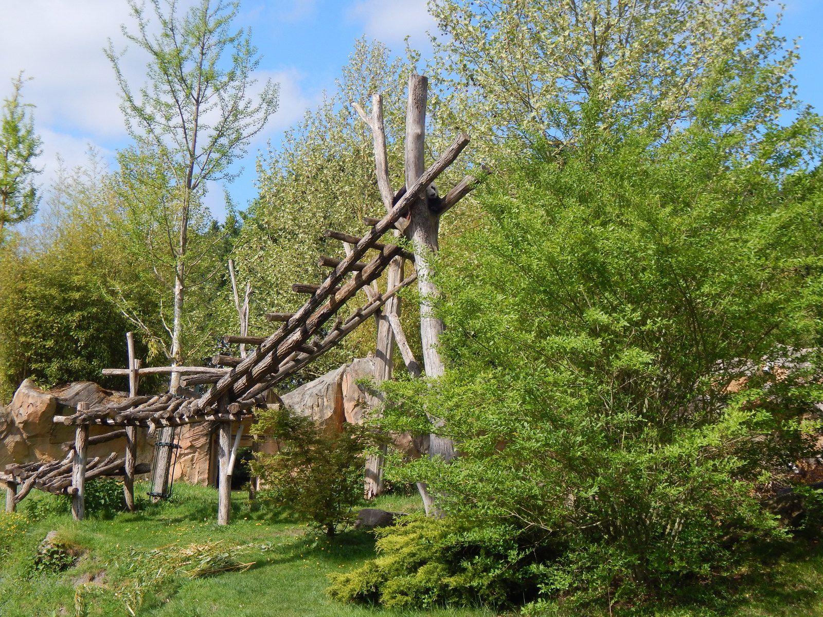 Ma visite au Parc de Beauval