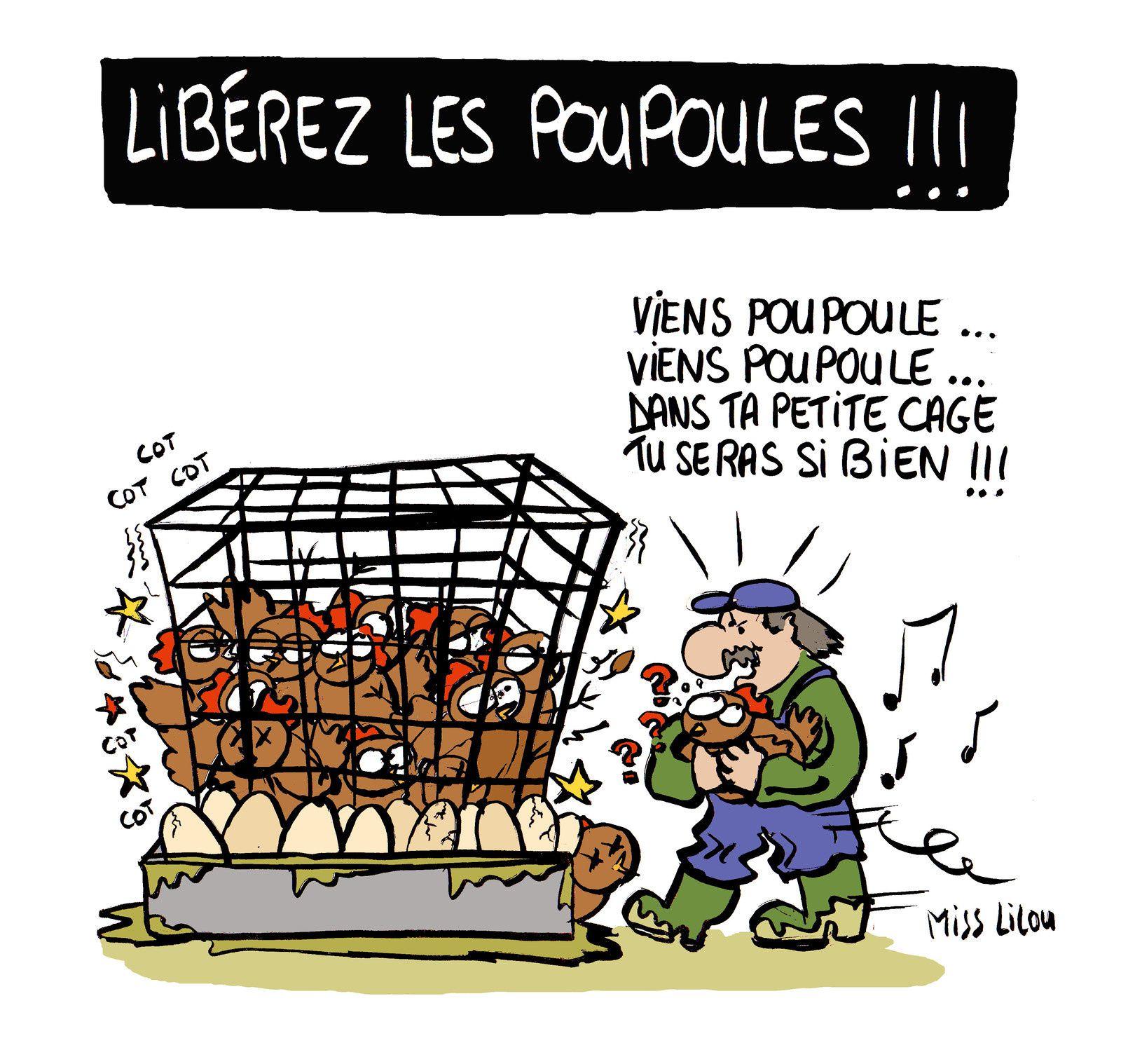 Libérez les Poupoules !