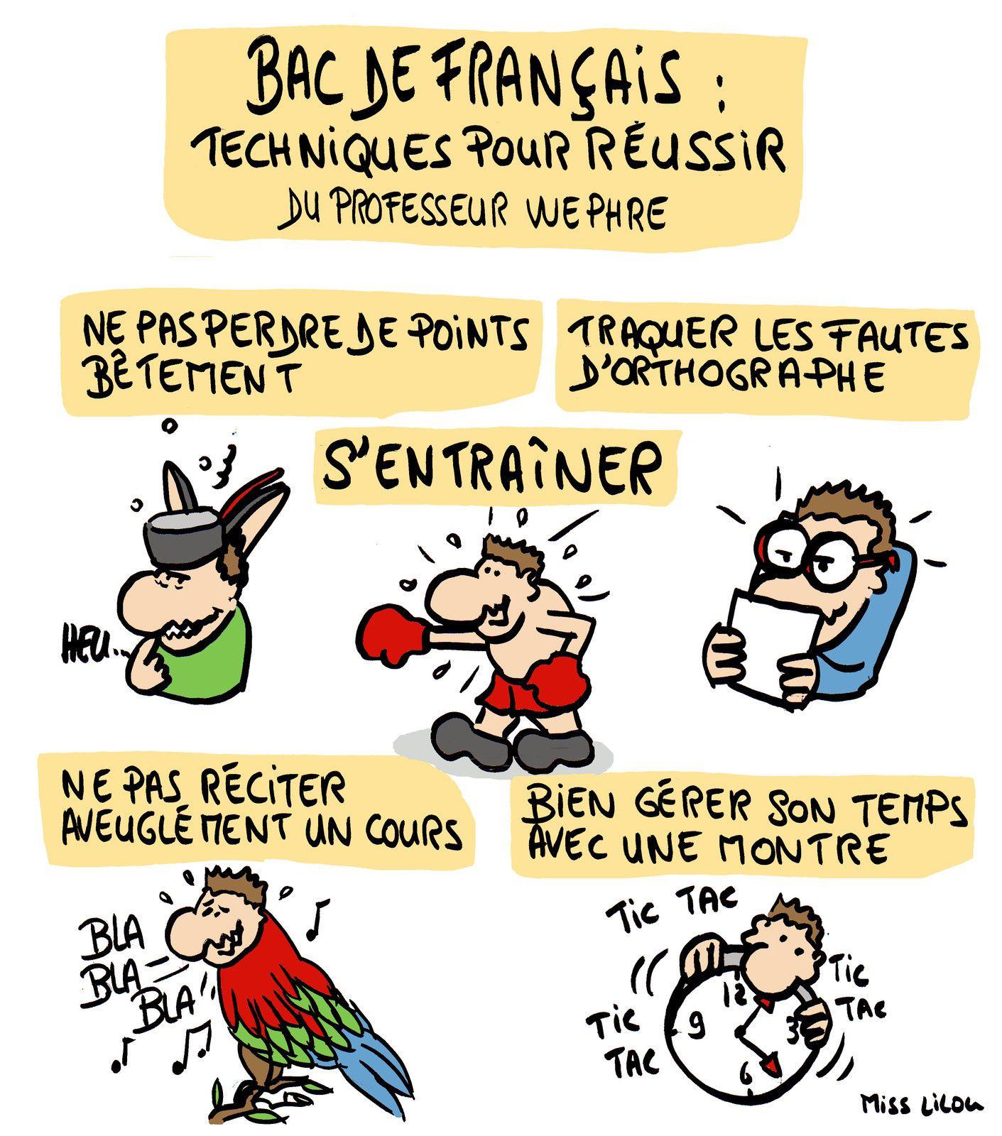 Bac de Français : Techniques pour réussir du Professeur Wephre !