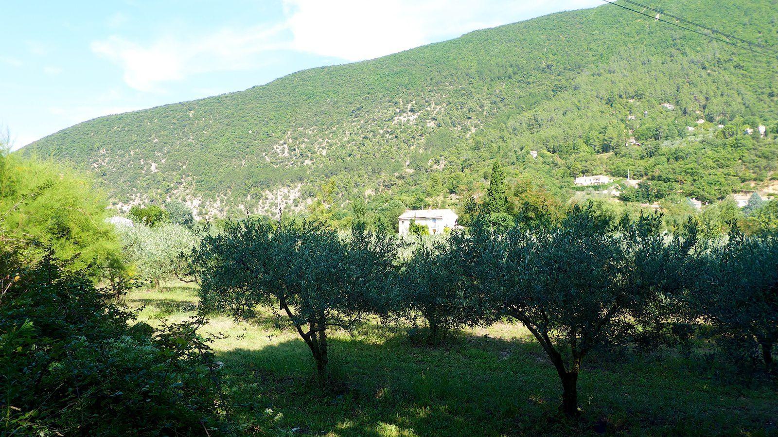 LES GRANDES VACANCES  AOÛT 2014 DES ALPES-DE-HAUTE-PROVENCE À LA HAUTE-SAVOIE