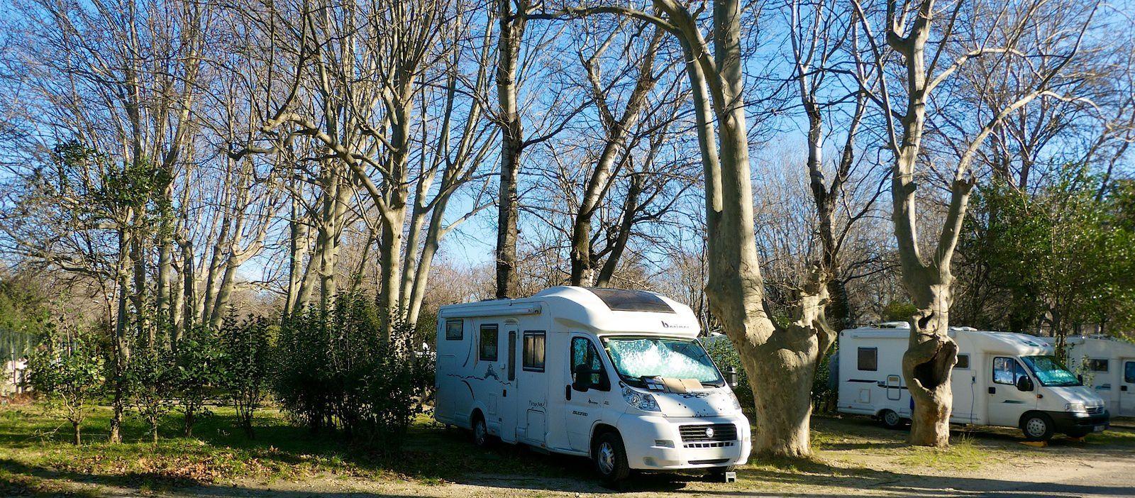 Camping BAGATELLE Ile de la Barthelasse  AVIGNON