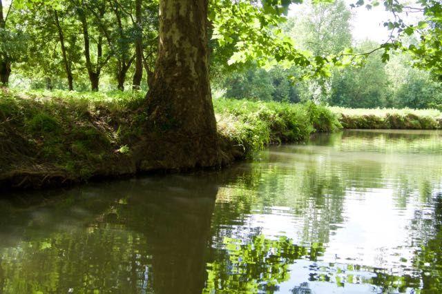 À la découverte du Marais poitevin août 2016