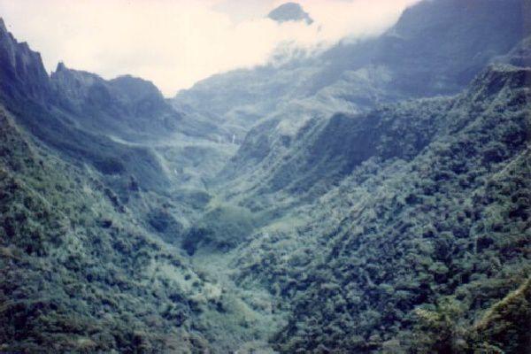 Papenoo, haute vallée - 1991