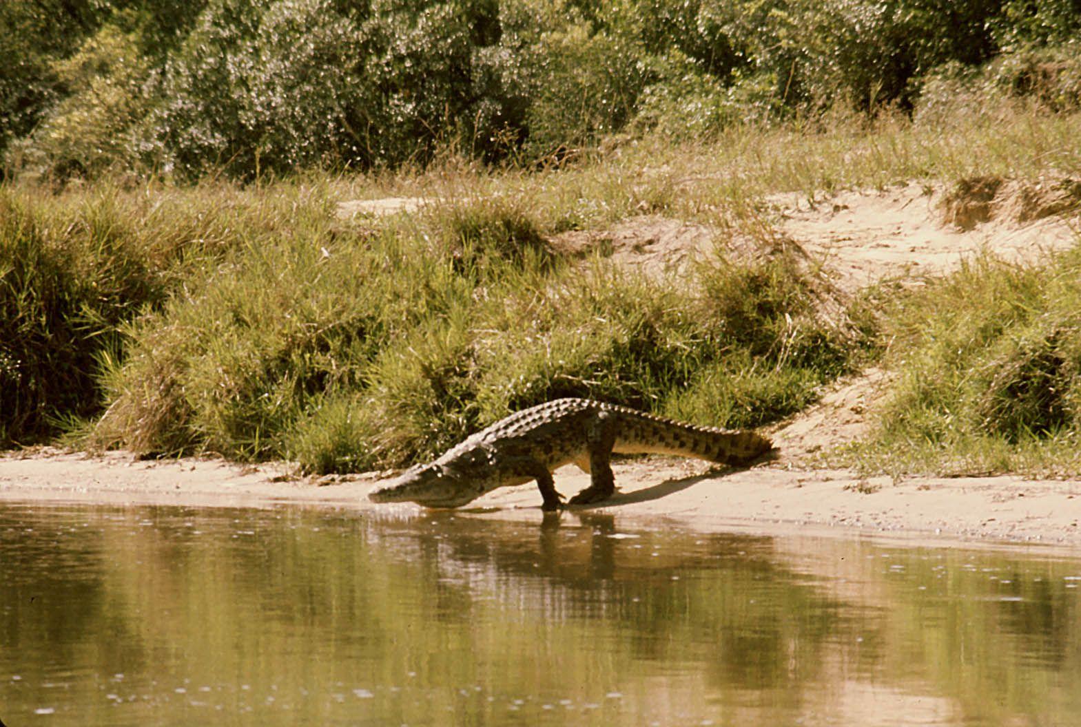 Nord Ouganda