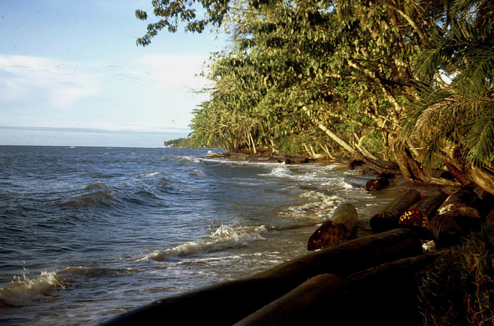 1971 : Billes d'okoumé perdus en mer au Gabon