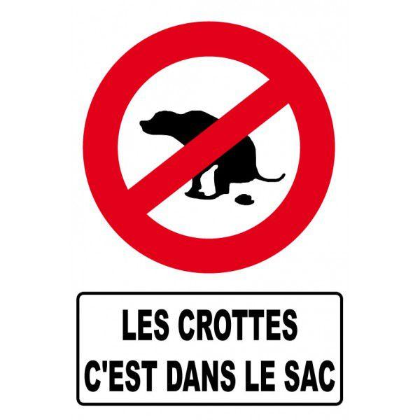 Déjections canines : ruelle du loup nettoyée !
