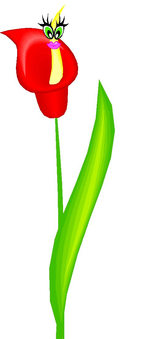la fleur 2