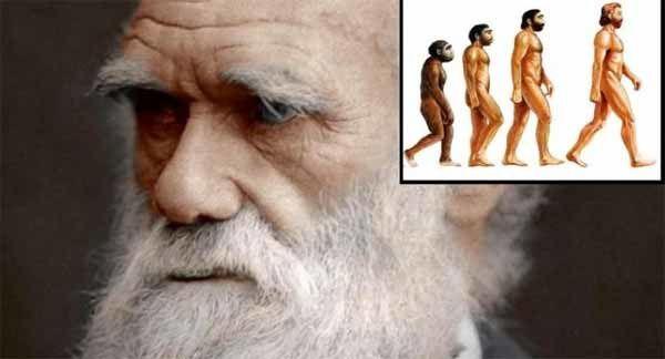 Un groupe de plus de 500 scientifiques a publié les raisons pour lesquelles ils rejettent la théorie de l'évolution de Darwin