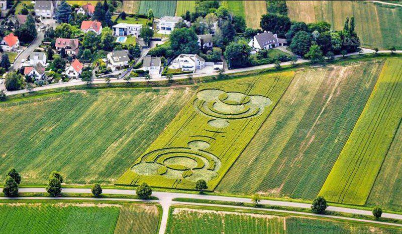 Crop Circle de Blaesheim en Alsace