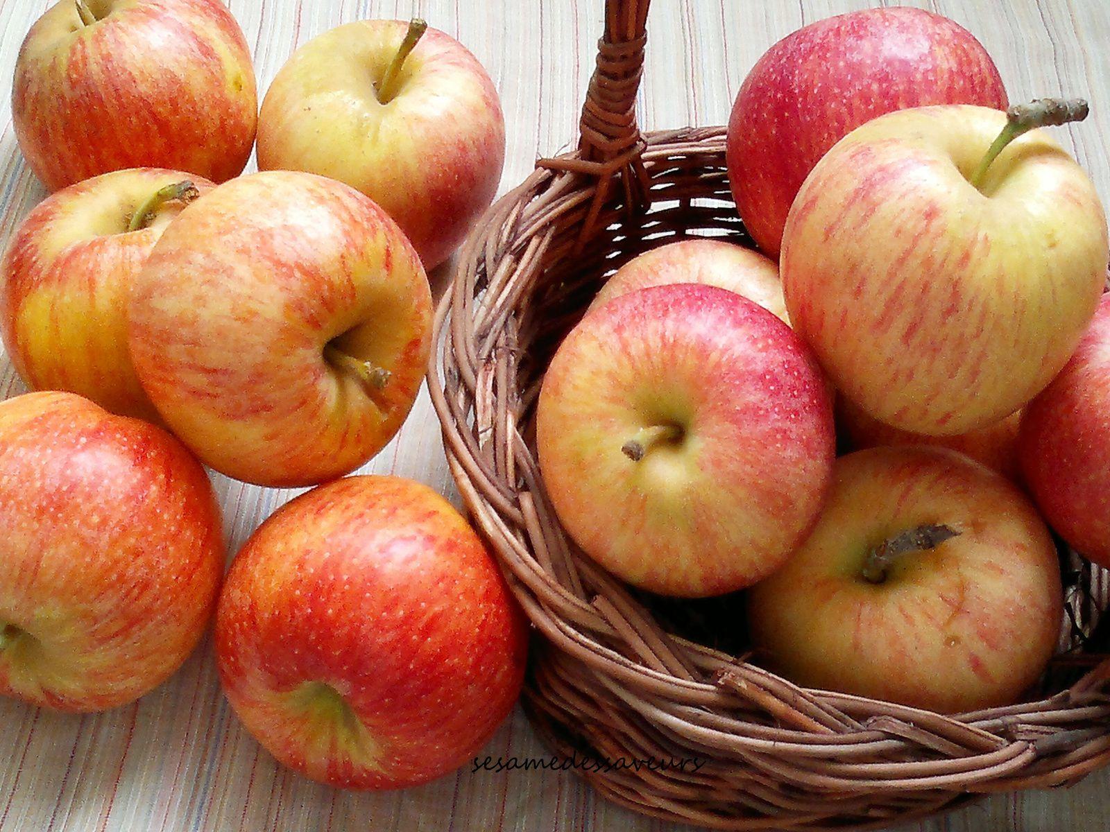 Recettes aux pommes