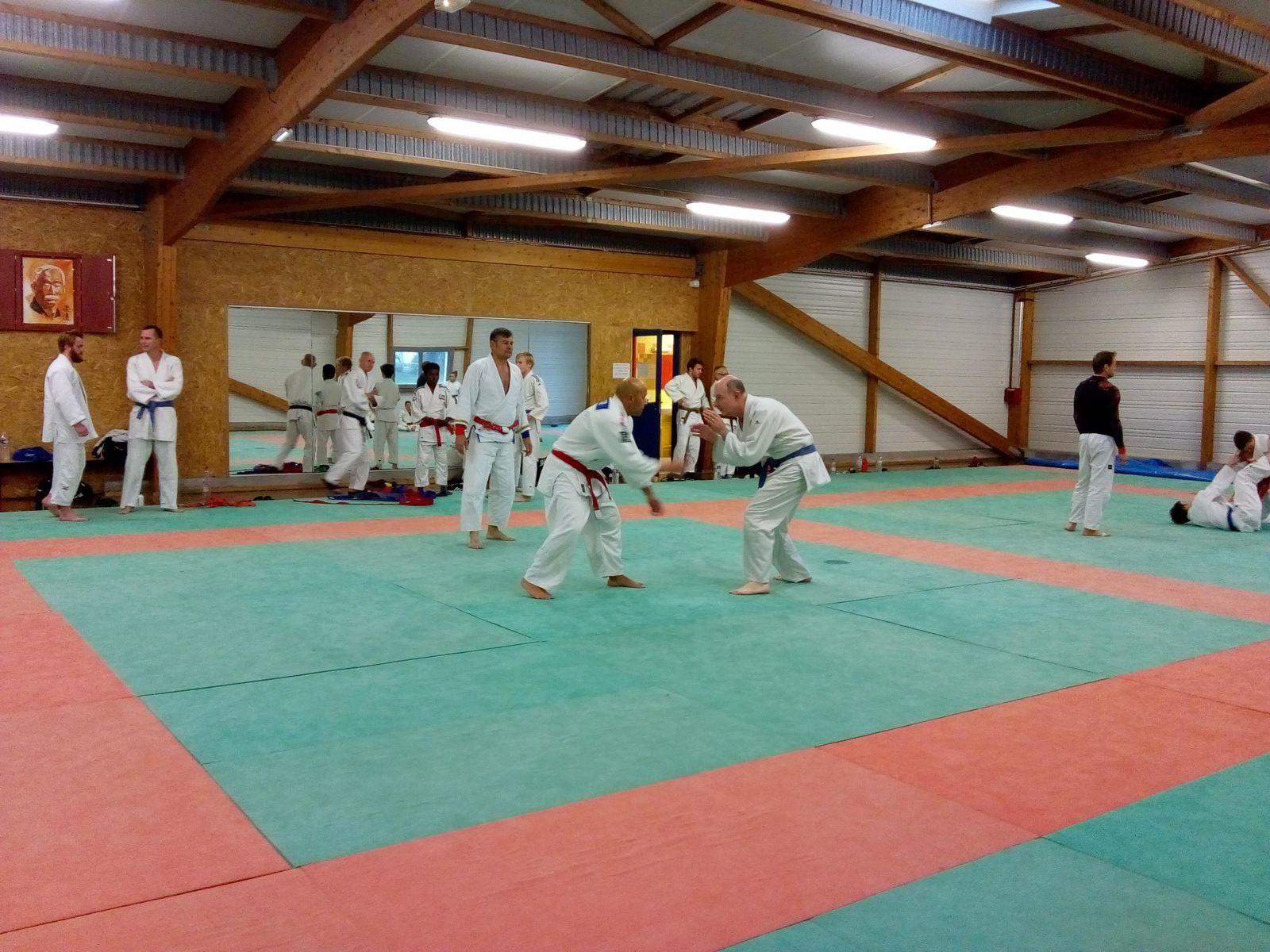 Stage de jujitsu ne-waza départemental