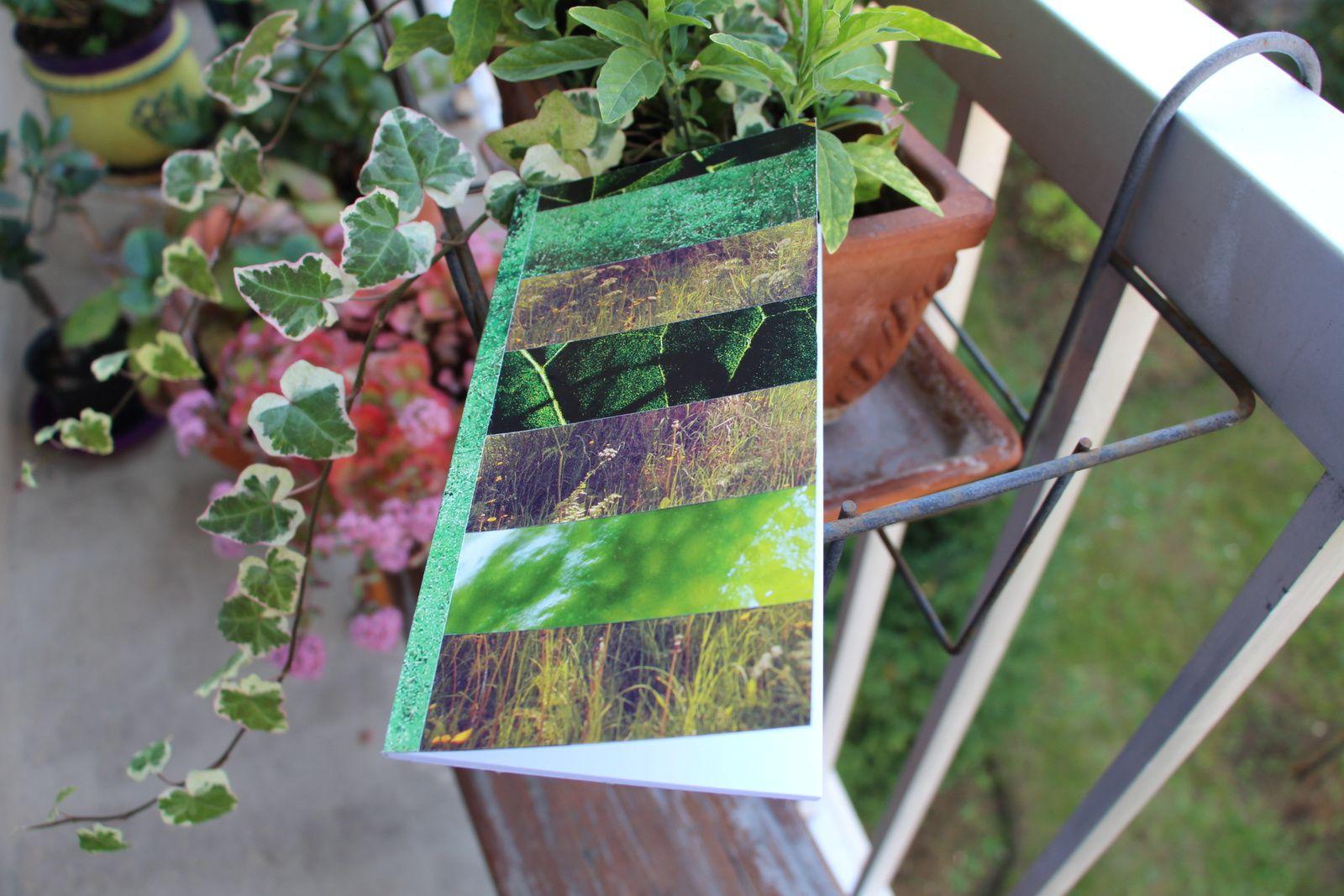 """Les Collages d'eMmA MessanA, collage sur carnet """"Herbier de papier"""", pièce unique. Couverture recto © eMmA MessanA"""
