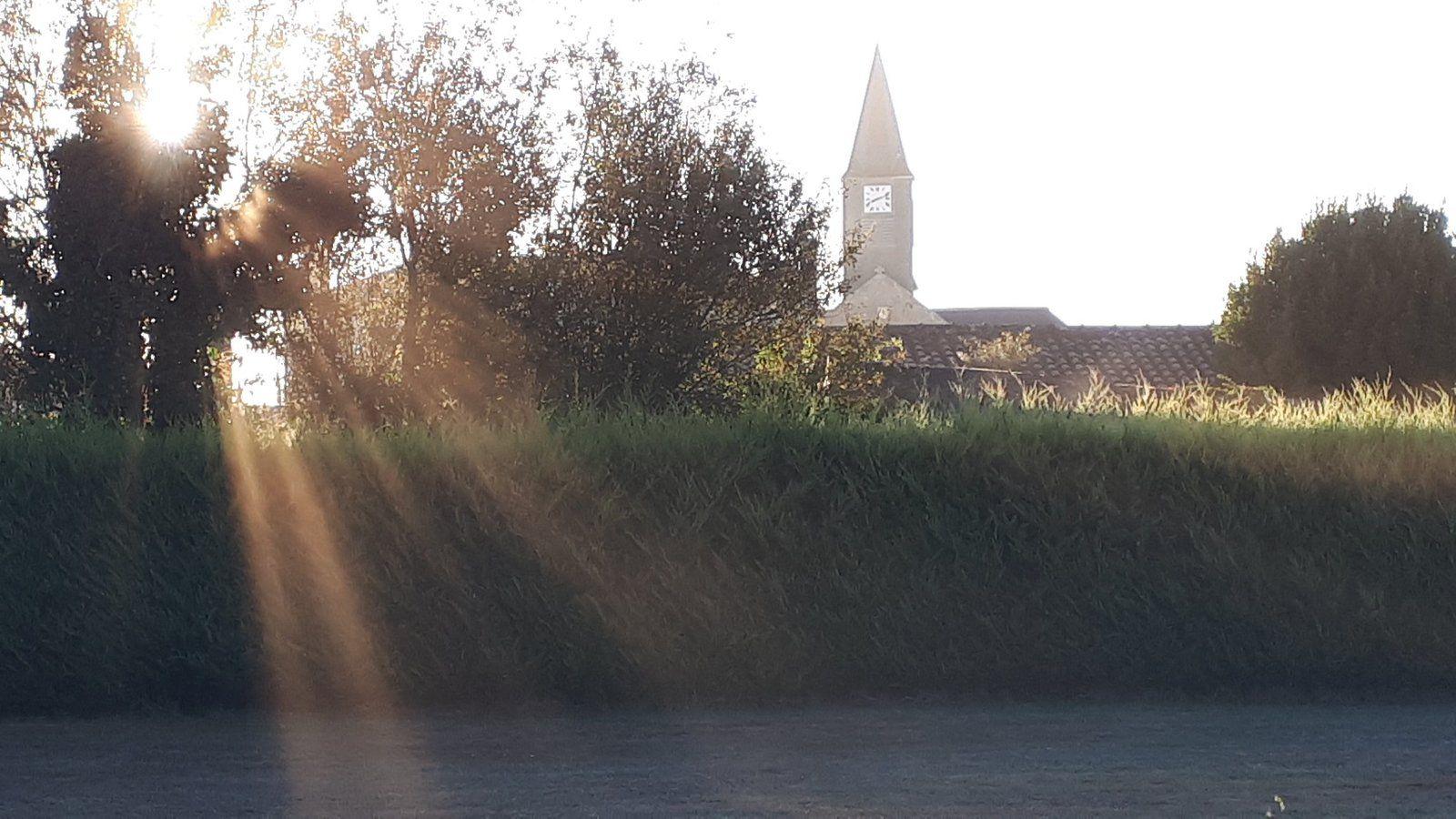 Septembre 2019, Saint-Urbain (Vendée) © eMmA MessanA