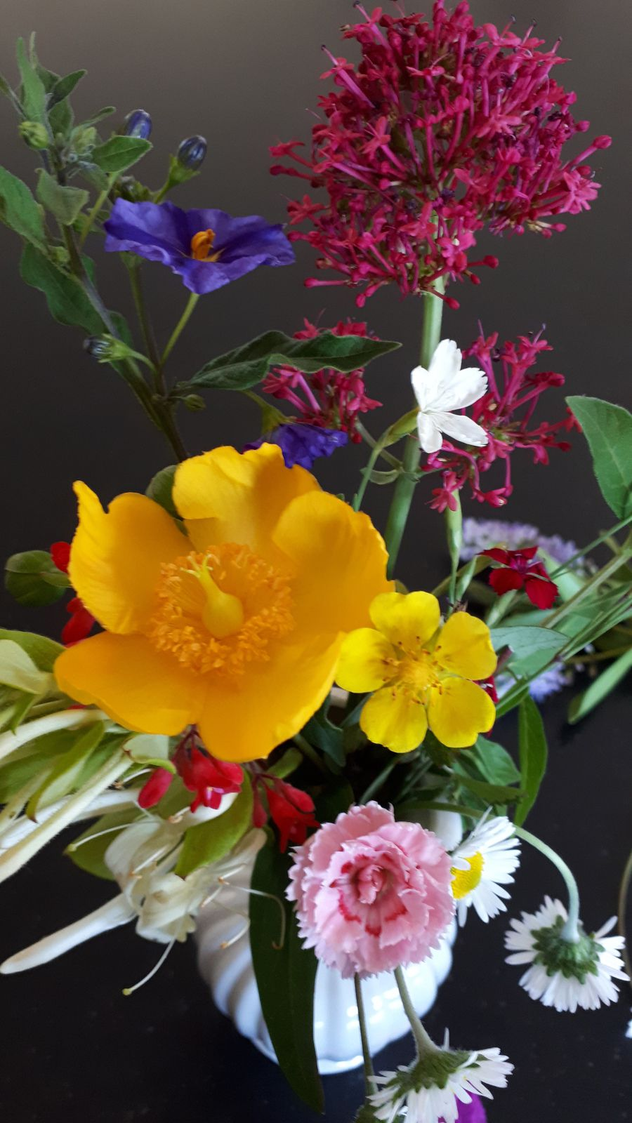 31 mai 2020, quelques fleurettes de mon jardin de Saint-Urbain (Vendée)