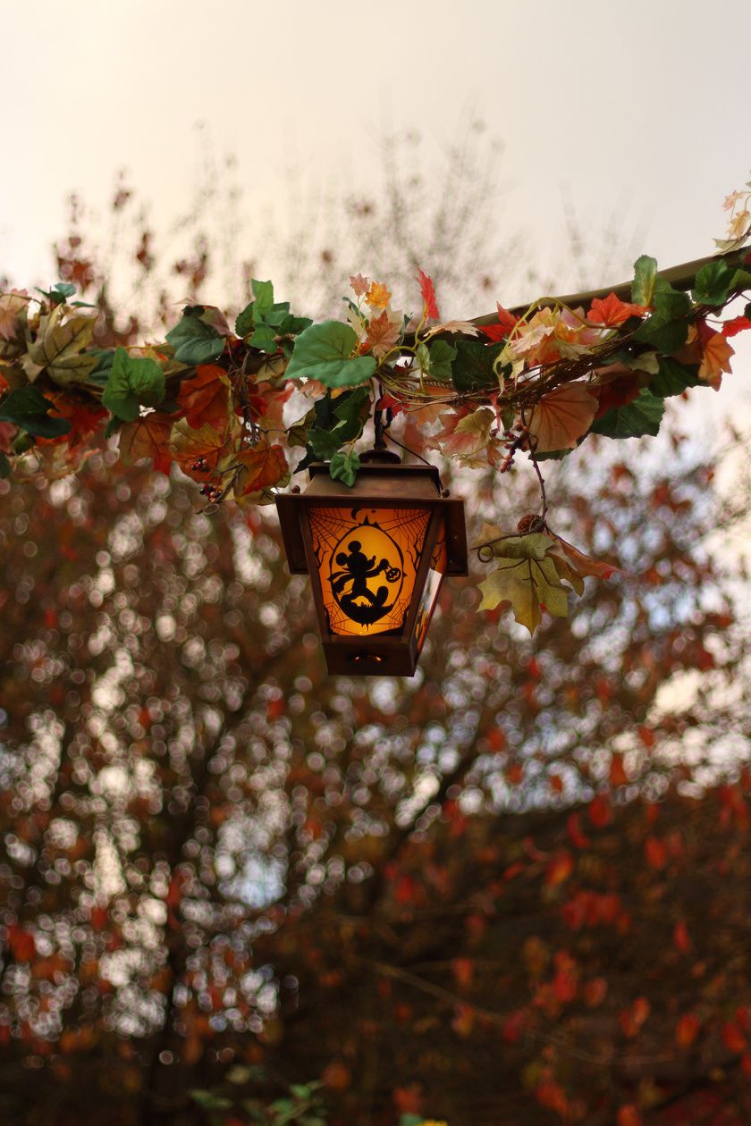 Halloween 'el dia de los muertos' à Disneyland Paris