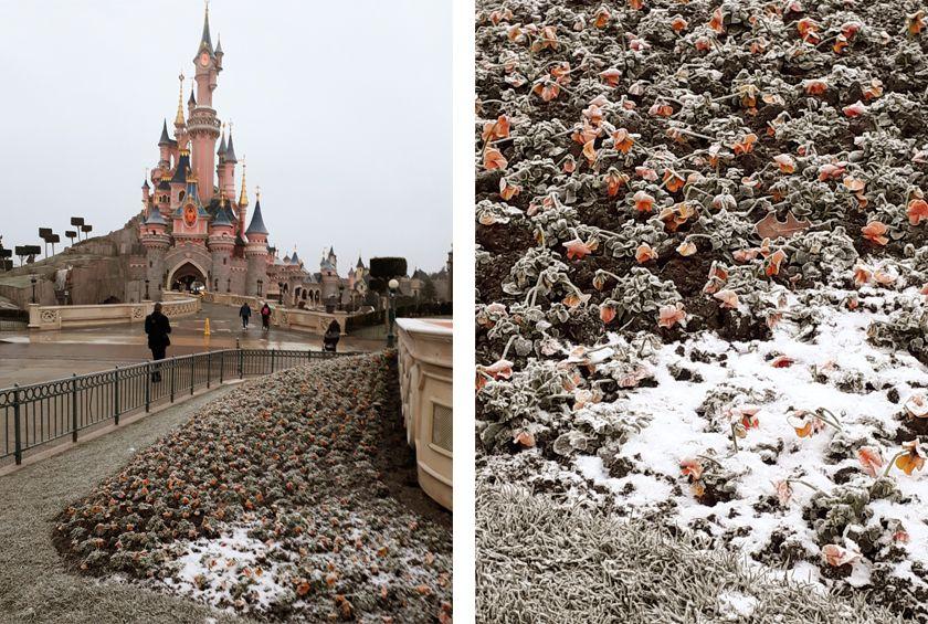 Un hiver givré à Disneyland Paris