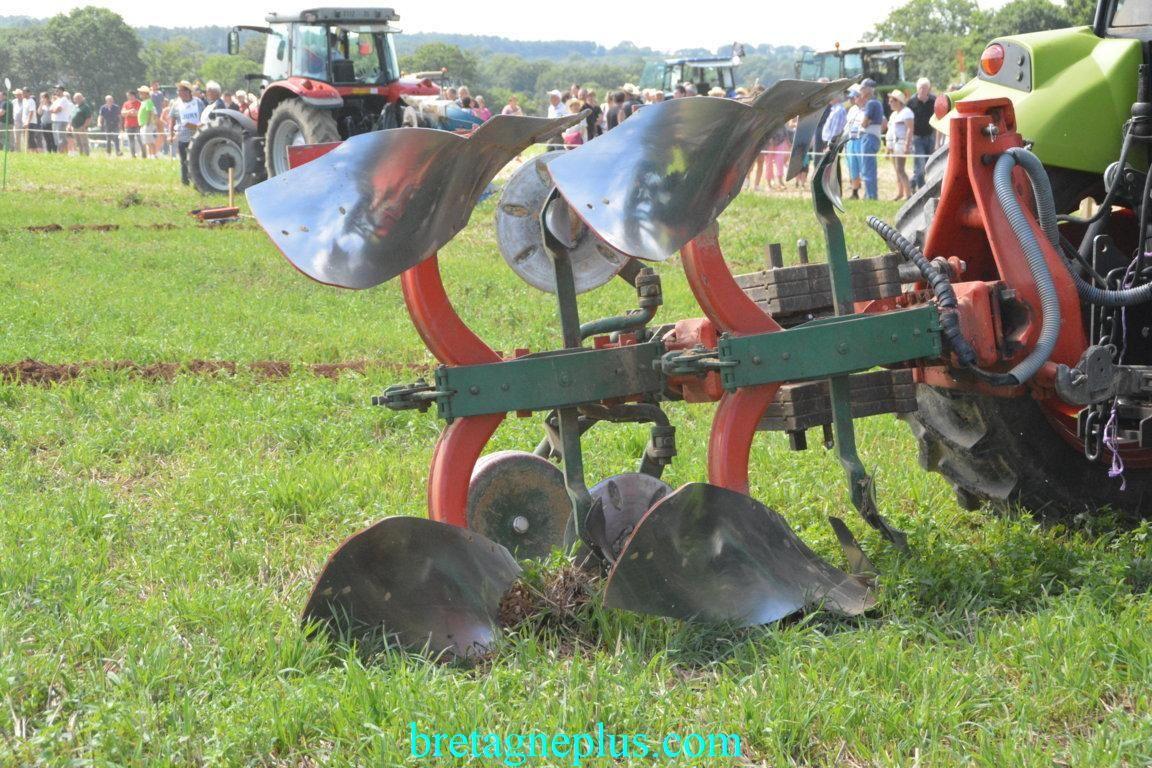 Fête de l' agriculture Sixt-sur- Aff 2017