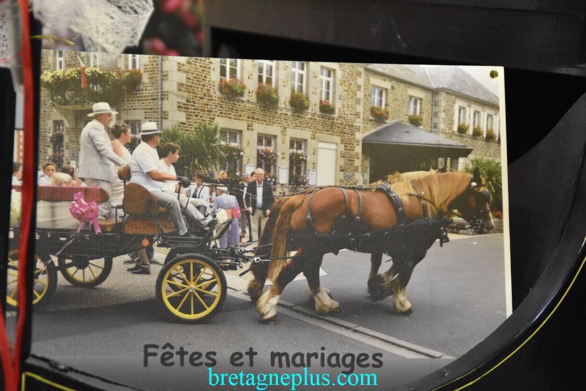 Salon du Mariage et jours de fêtes Rennes 2019