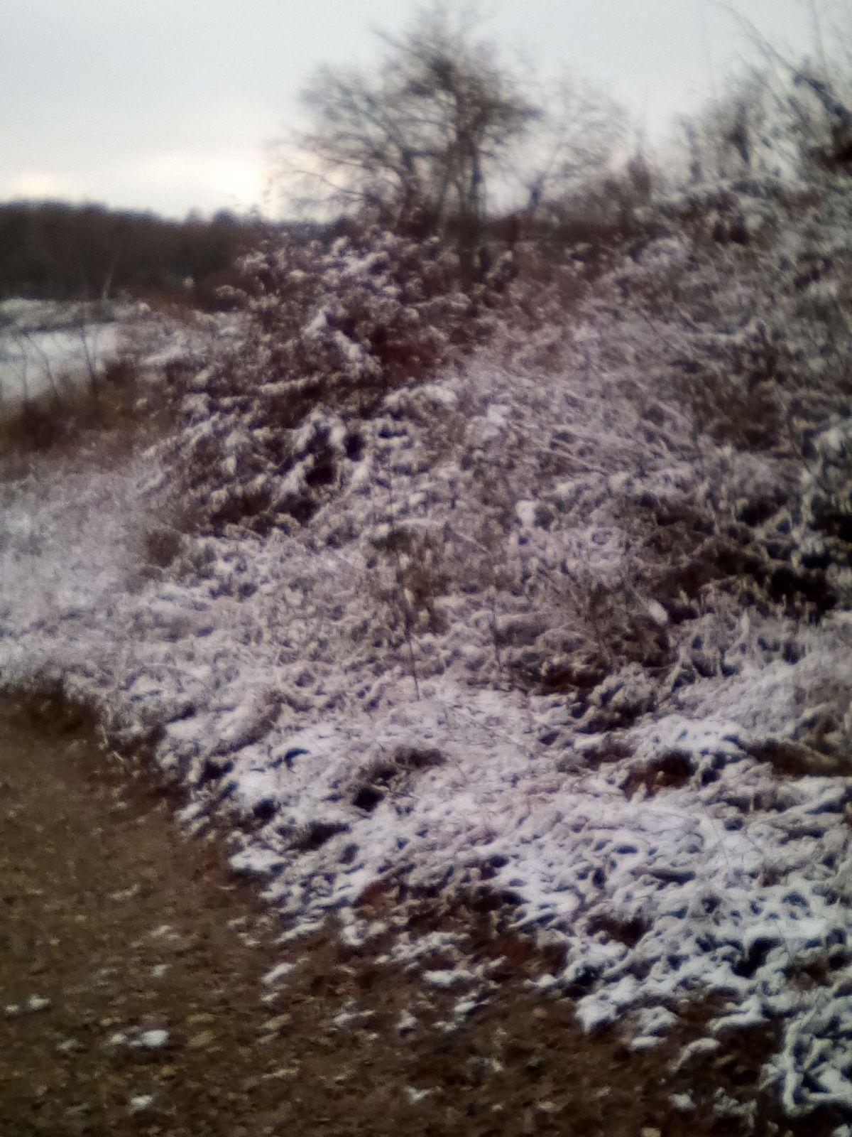 J'ai connu des sorties VTT avec plus de neige