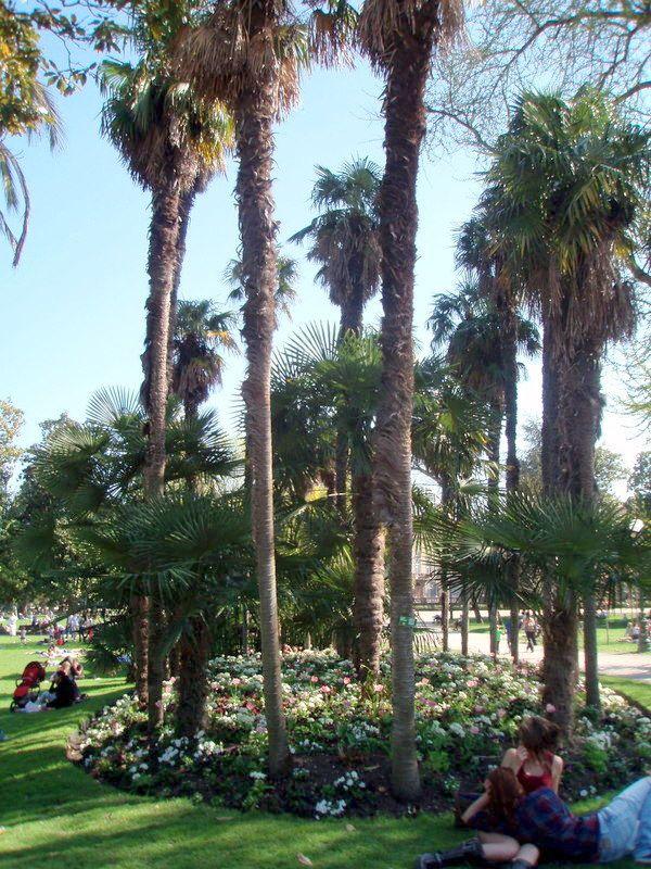 Place Gambetta - Jardin Public. Bordeaux