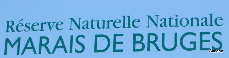 Les Marais de Bruges