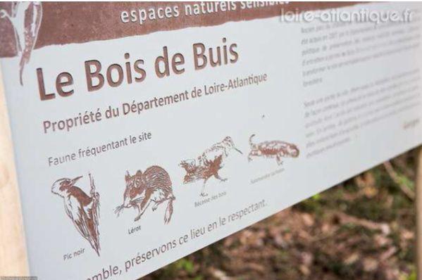 """Les """"12 Km"""" à Gorges"""